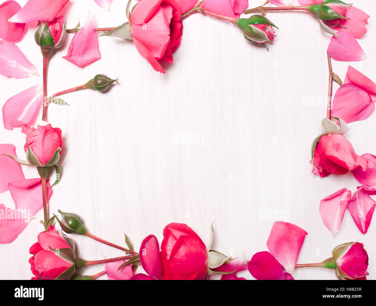 Frame Of Pink Flowers On White Backgroundttern Of Red Stock Photo