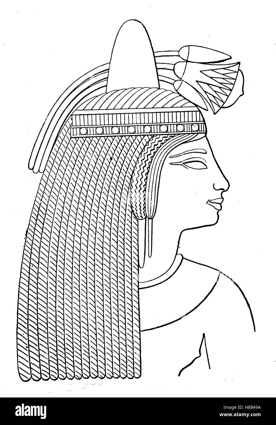 Ancient egypt lady head with lotus flowers 19th dynasty thebes ancient egypt lady head with lotus flowers 19th dynasty thebes history of fashion costume story mightylinksfo