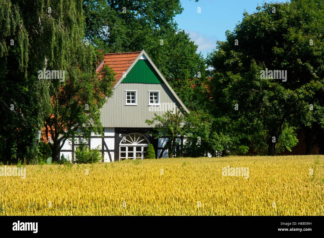 Deutschland, Nordrhein-Westfalen, Werther, Haus im Ortsteil Arrode - Stock Image