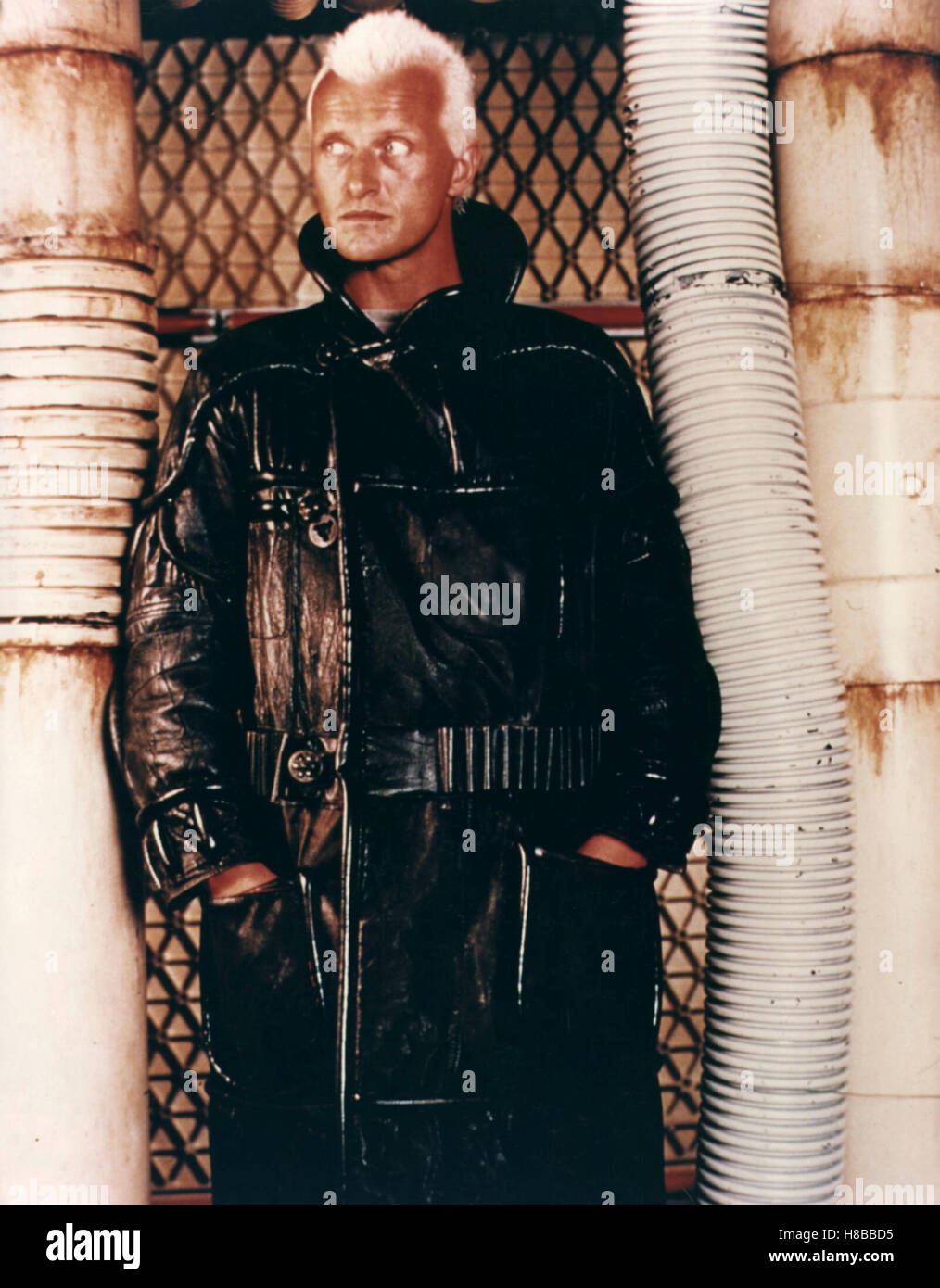 Blade Runner, (BLADE RUNNER) USA 1982, Regie: Ridley Scott, RUTGER HAUER - Stock Image