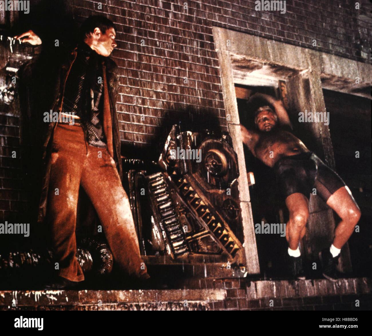 Blade Runner, (BLADE RUNNER) USA 1982, Regie: Ridley Scott, HARRISON FORD, RUTGER HAUER, Key: Kampf, Gefecht - Stock Image