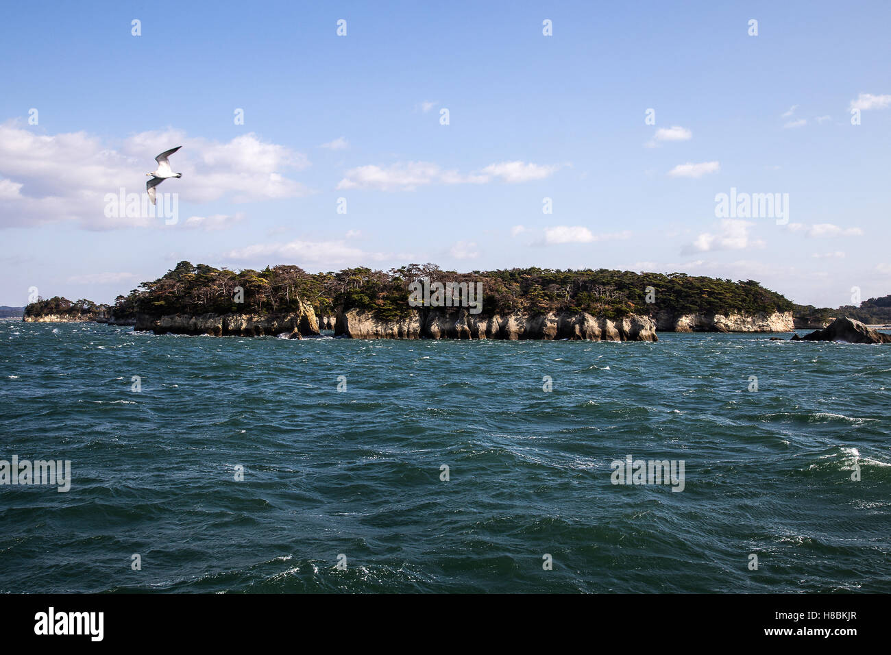 Matsushima Bay has over 260 tiny islands and considered to be one of Japan's Three Great Sights - Nihon Sankei. - Stock Image