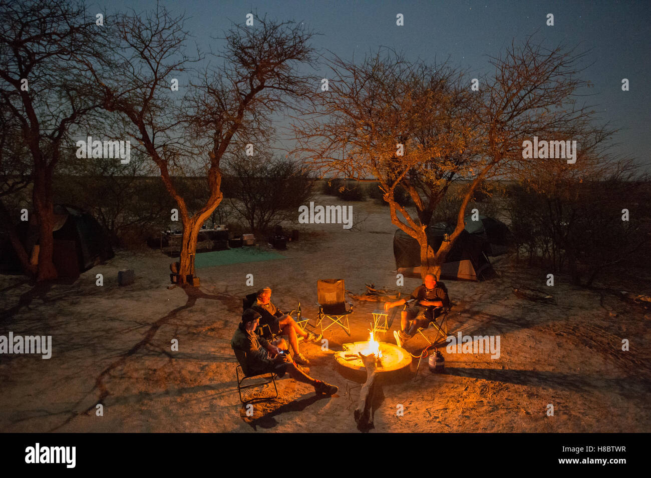Top down view of campers sitting around a camp fire at night talking surrounded by Acacia trees - Stock Image
