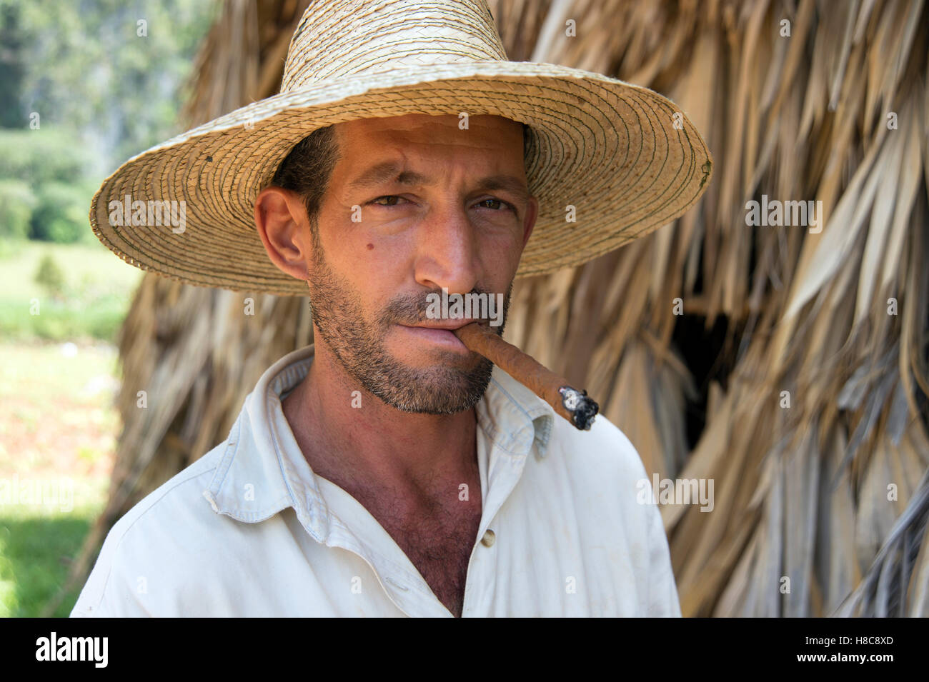 Portrait of a farmer wearing a straw hat smoking a cigar with the thatched tobacco drying house in the background - Stock Image