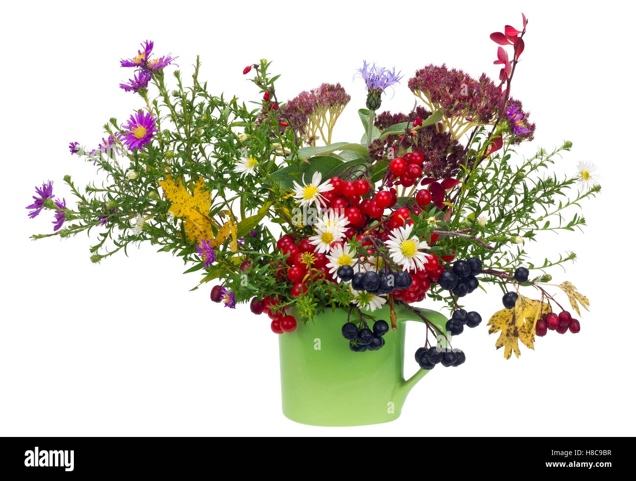 Naive rural bouquet from autumn October flowers and berries  in green a mug. Isolated on white - Stock Image