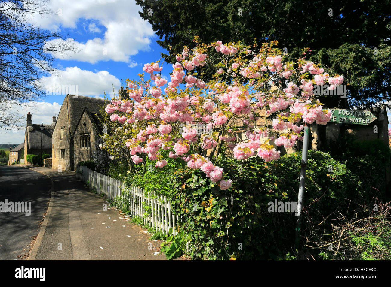 Summer view, Gretton village, Northamptonshire county; England; UK - Stock Image