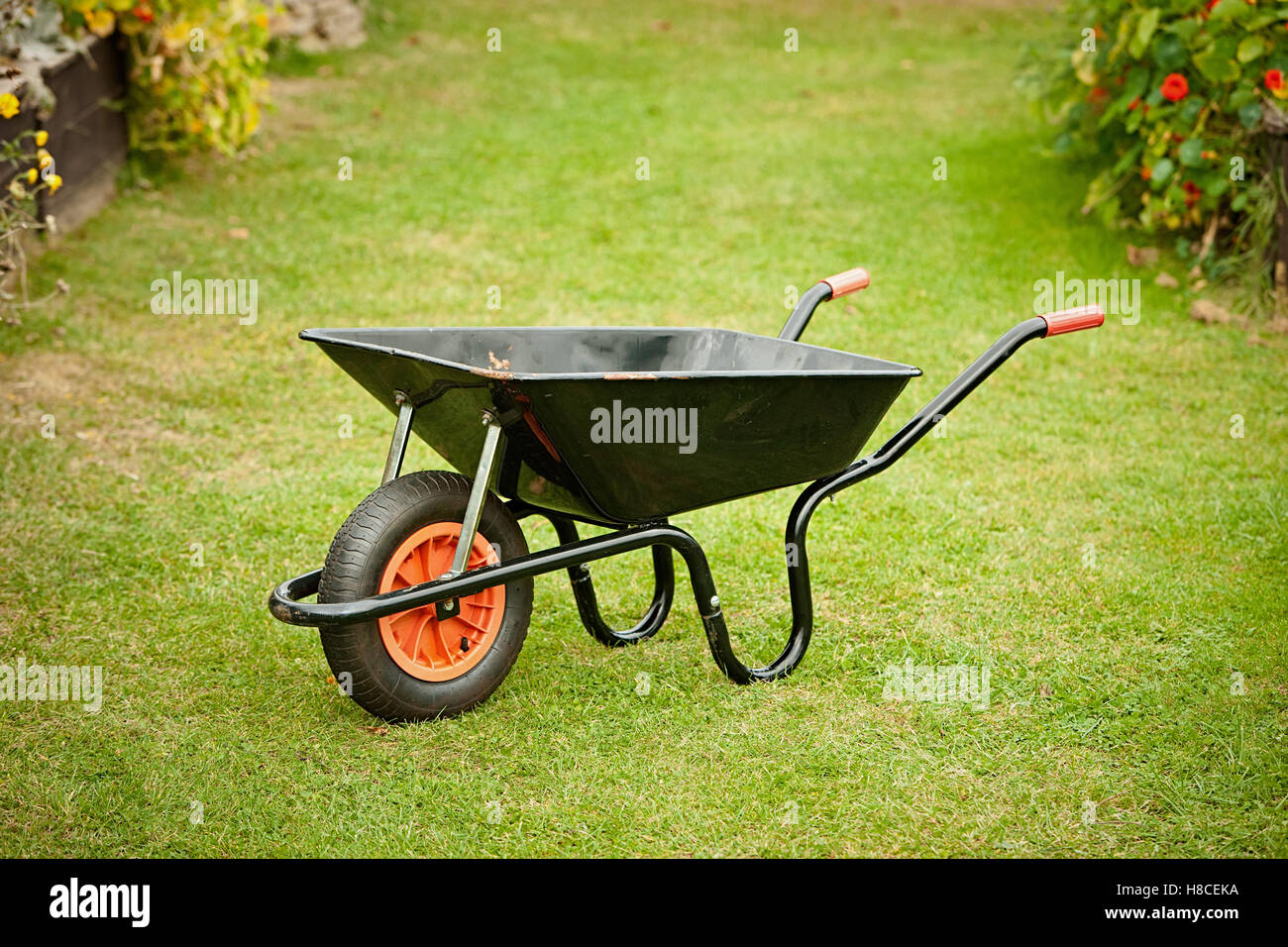 gardeners wheelbarrow standing on a lawn - Stock Image