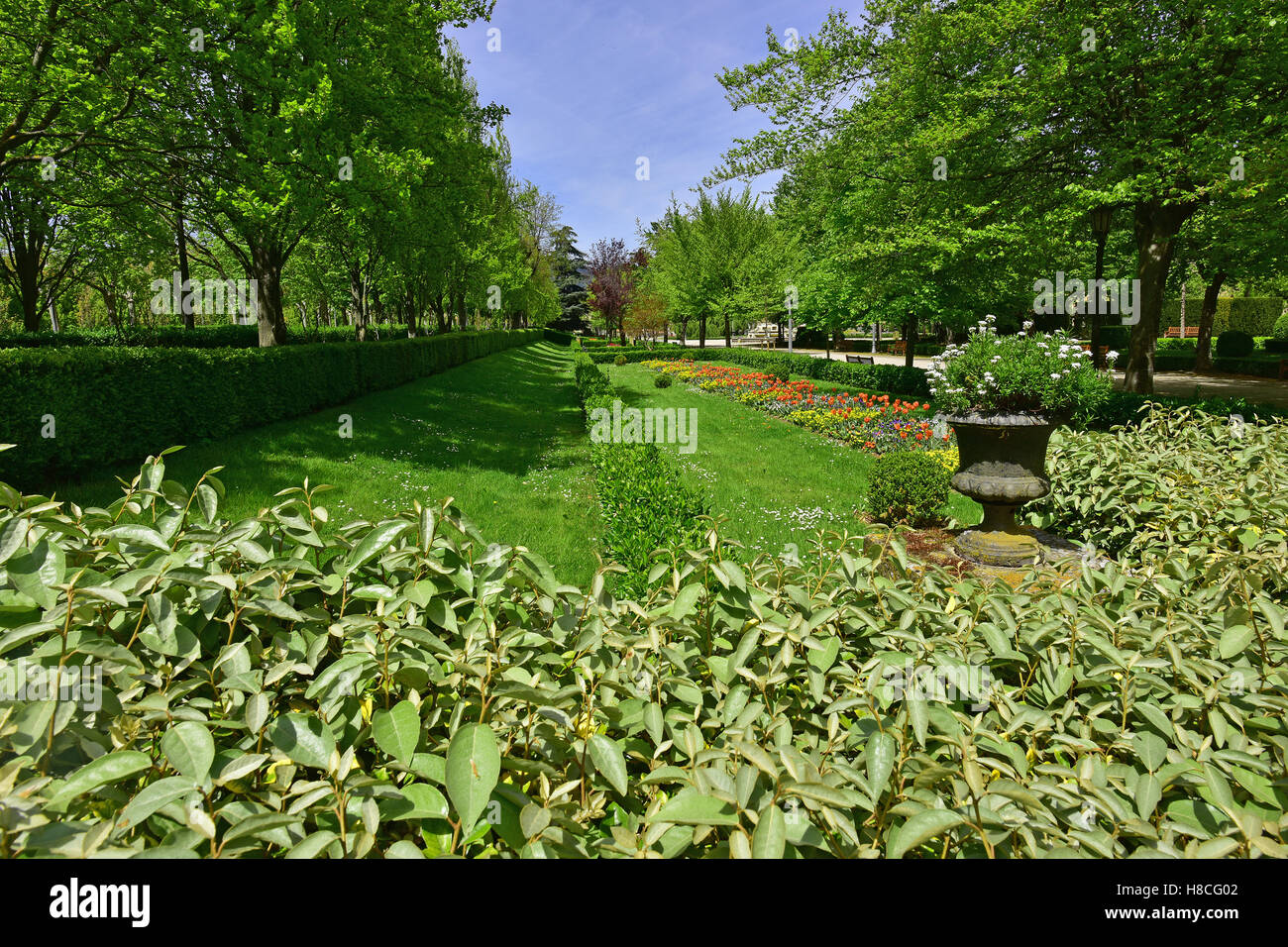 Hedged flower bed in Taconera Park Pamplona, Spain - Stock Image