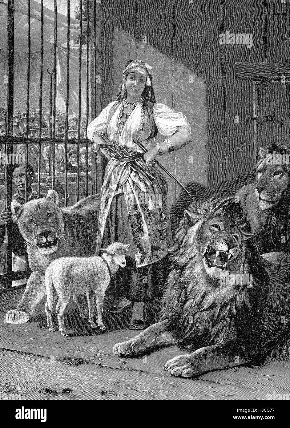 Circus lion tamer in the lion's den, Woodcut from 1892 - Stock Image