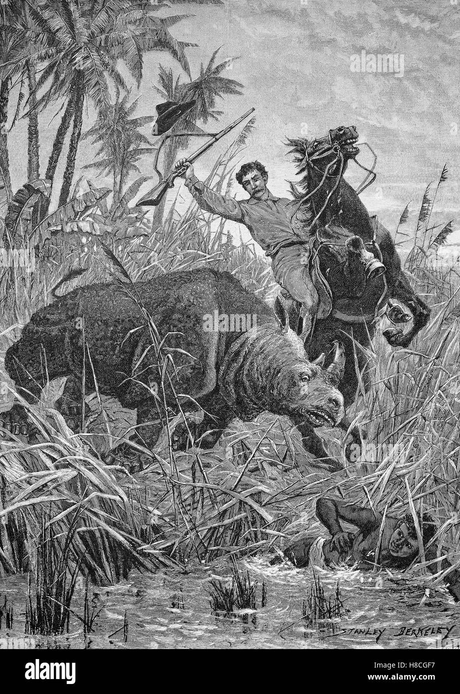 Rhinoceros Hunting in Africa, Woodcut from 1892 - Stock Image
