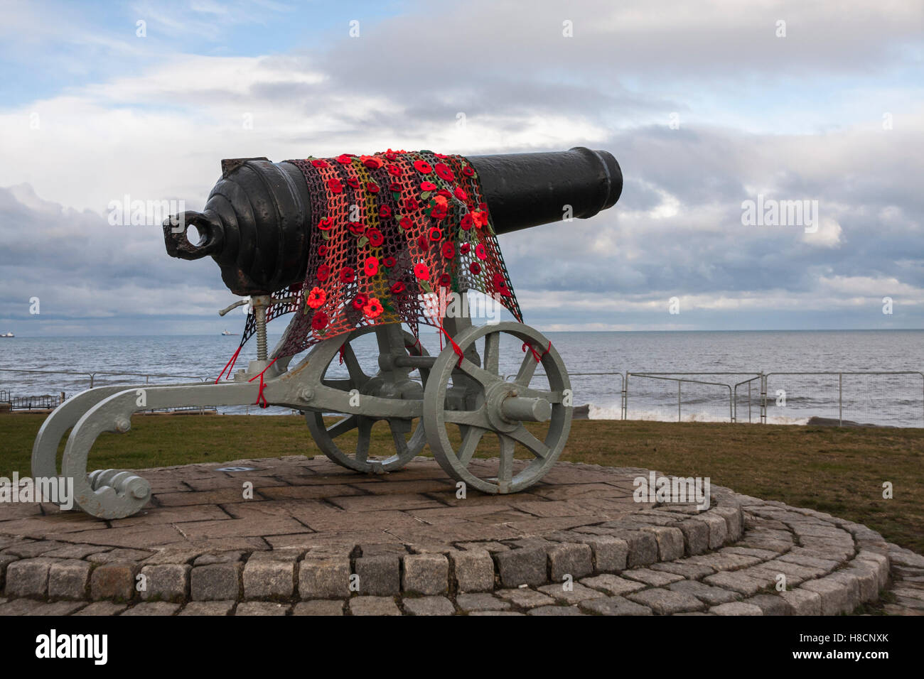 Poppies draped across the Sebastopol canon at Hartlepool Headland to commemorate  Rememberance Day - Stock Image