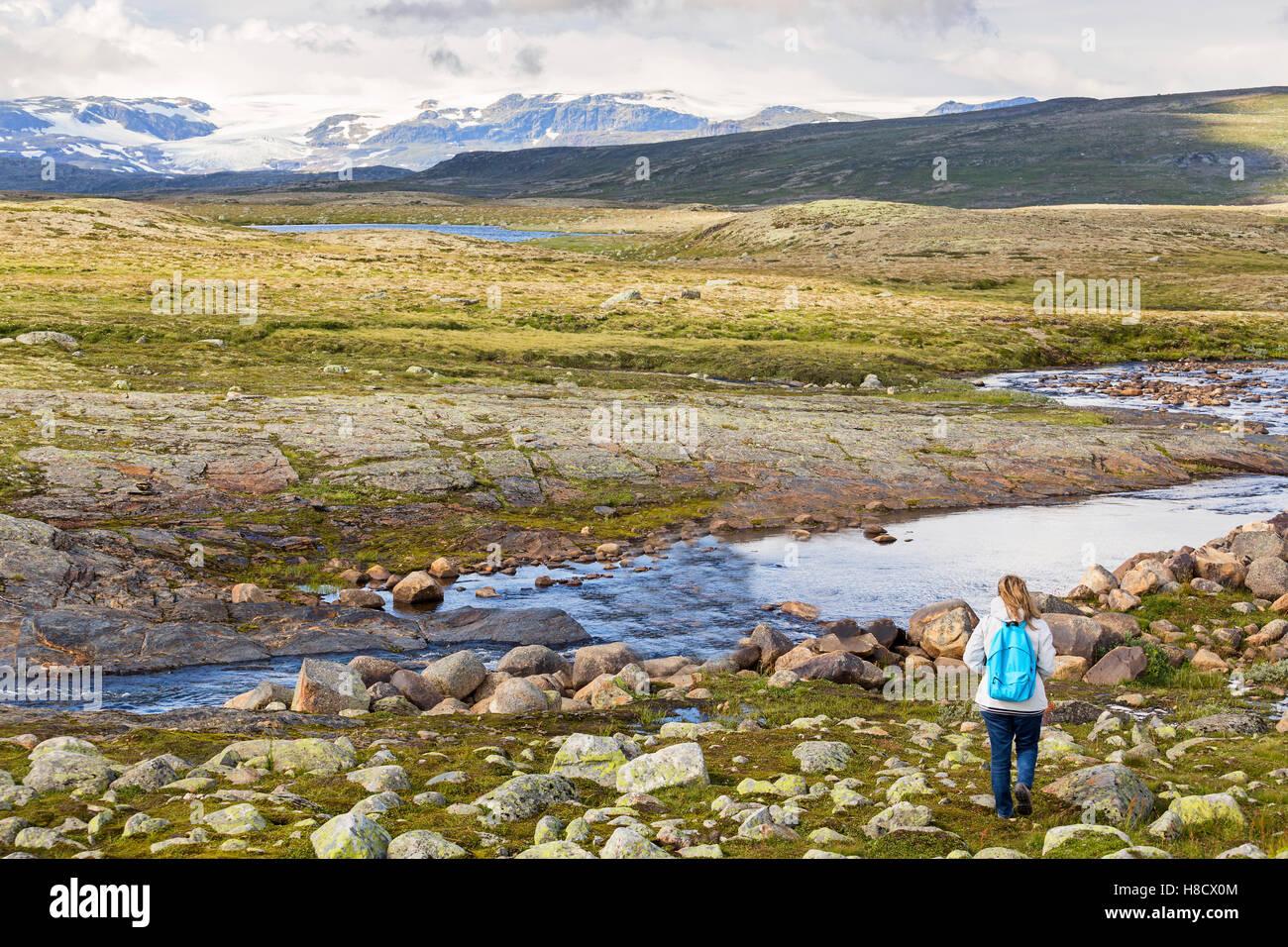 Woman looking at the Hardangervidda National Park landscape - Stock Image
