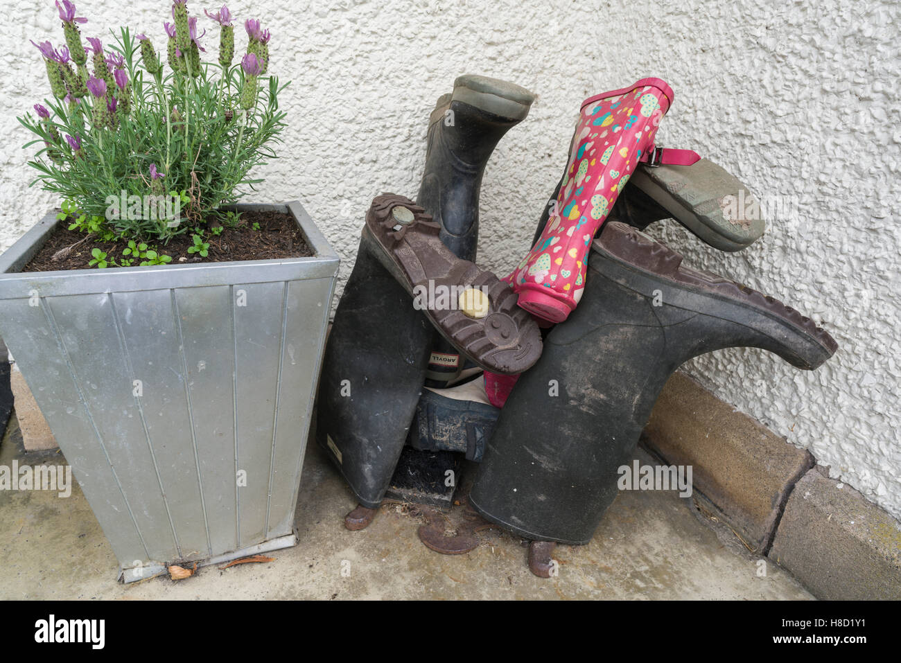 Welly-boots left upside down to keep dry, outside a house front door, with mud on them Stock Photo