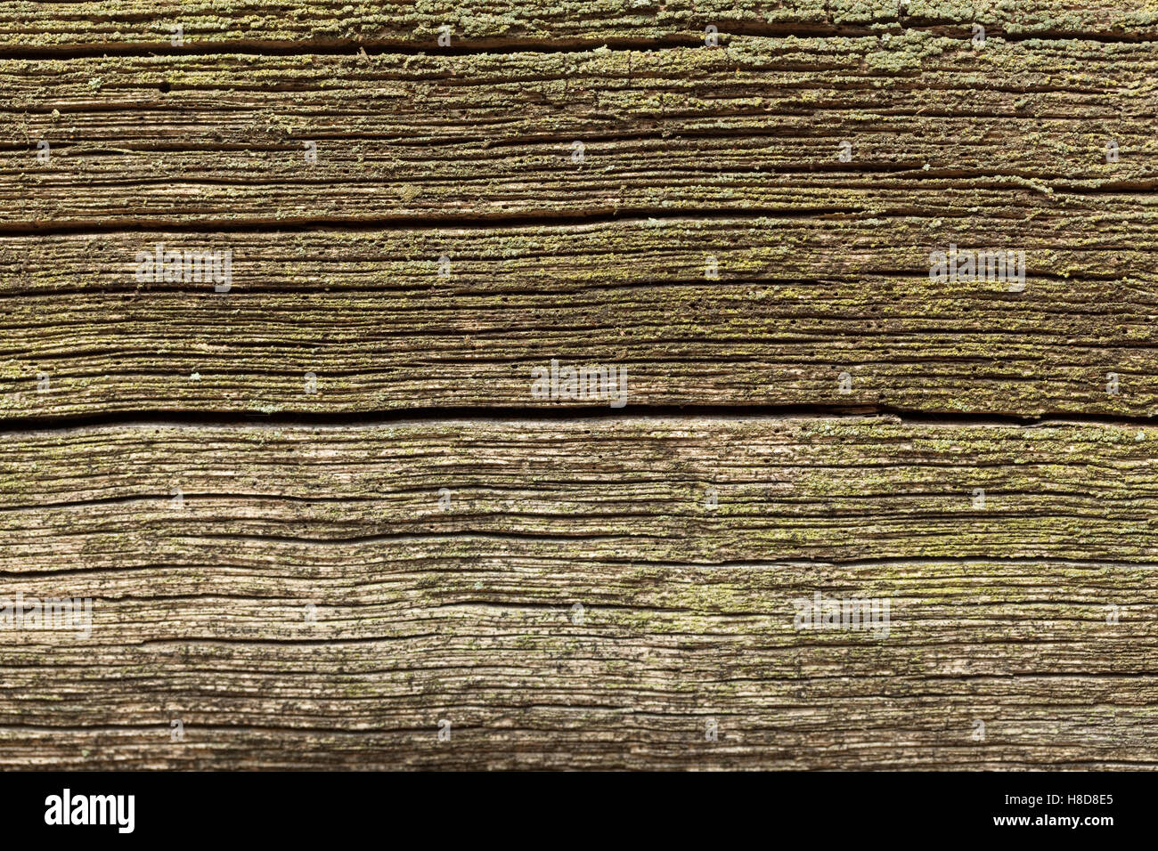 old black and porous plank as background - Stock Image