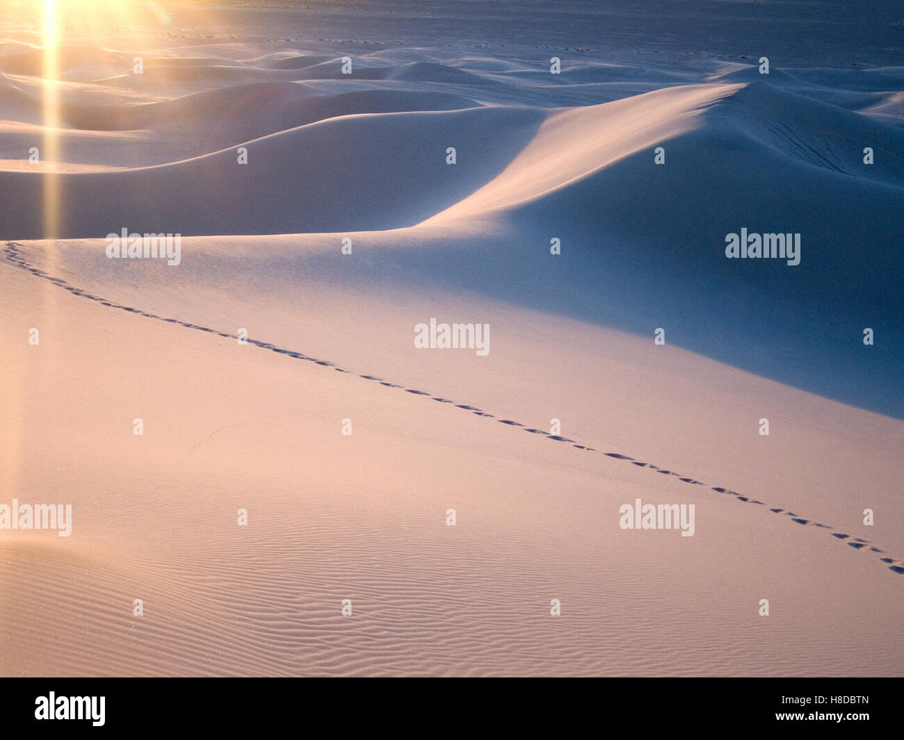 Desert Sand Dunes with Footprints - Stock Image