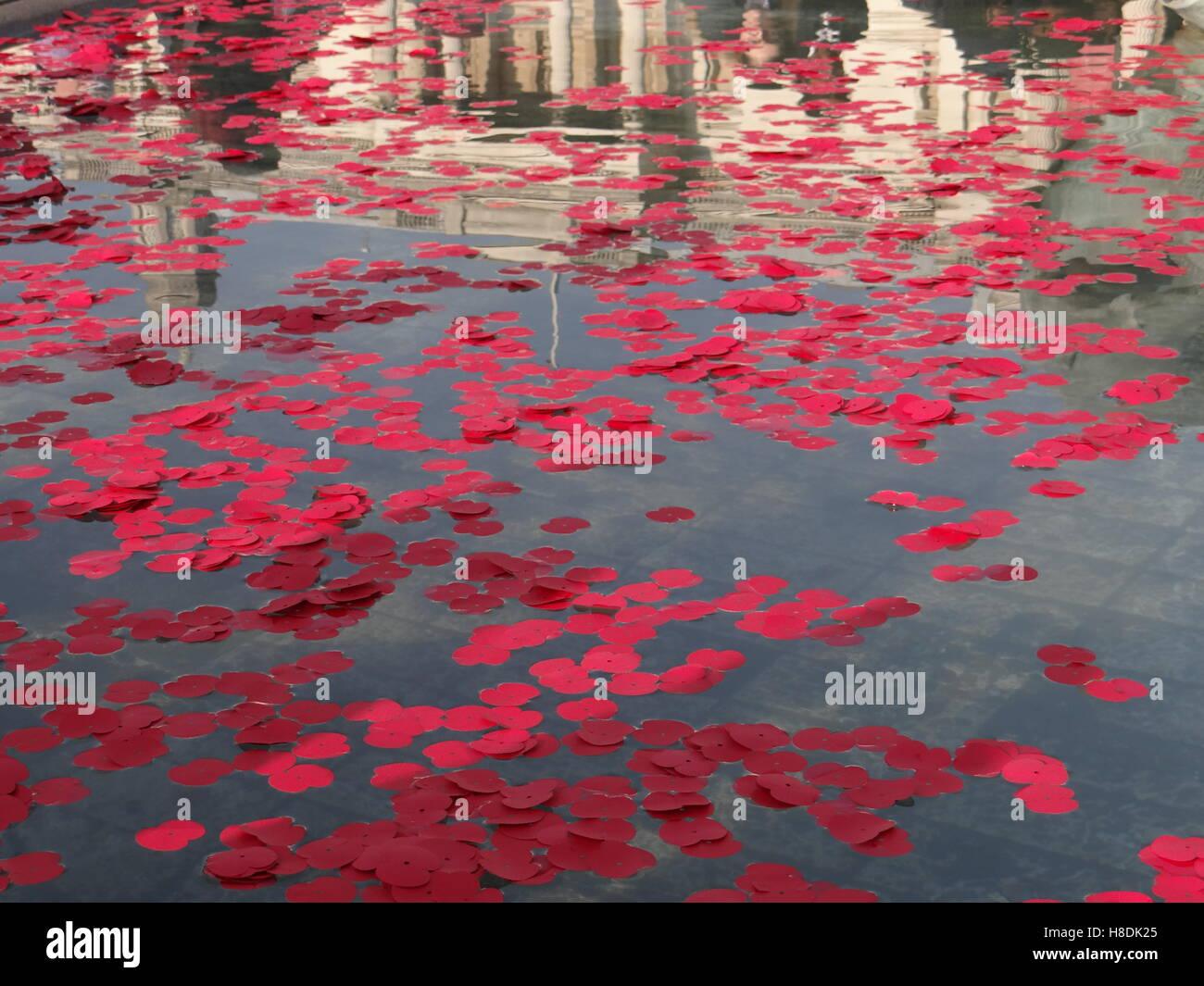 London, UK. 11th Nov, 2016. Silence in the square - Remembrance Day in London, Trafalgar square, London, UK © Nastia Stock Photo