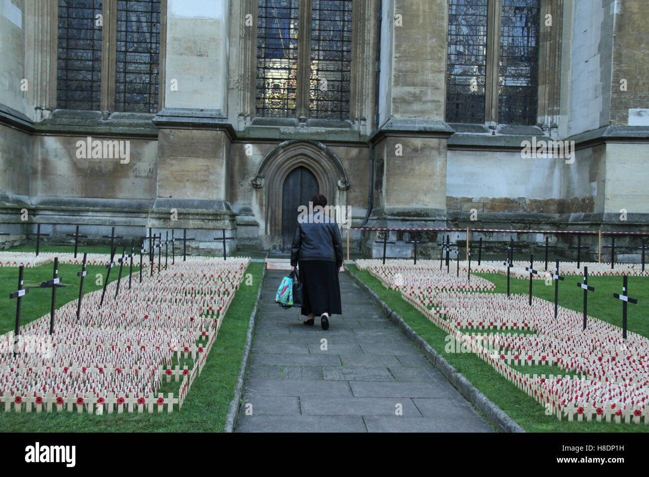 London, UK. 11th November, 2016. A woman walks past  crosses planted at the Fields of Remembrance at Westminster - Stock Image