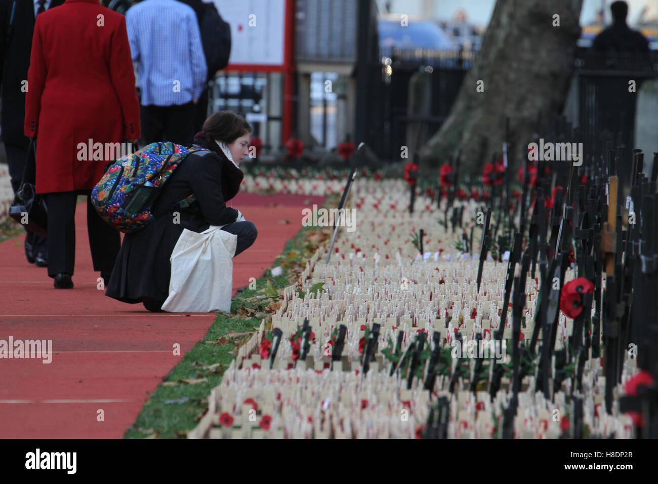 London, UK. 11th November, 2016. A woman seen looking at some of the thousands of crosses planted at the Fields - Stock Image