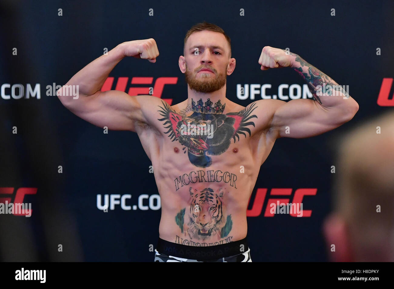 New York, NY, USA. 11, NOV, 2016. Conor McGregor during morning eeigh-in at UFC 205 at the Madison Square Garden. - Stock Image