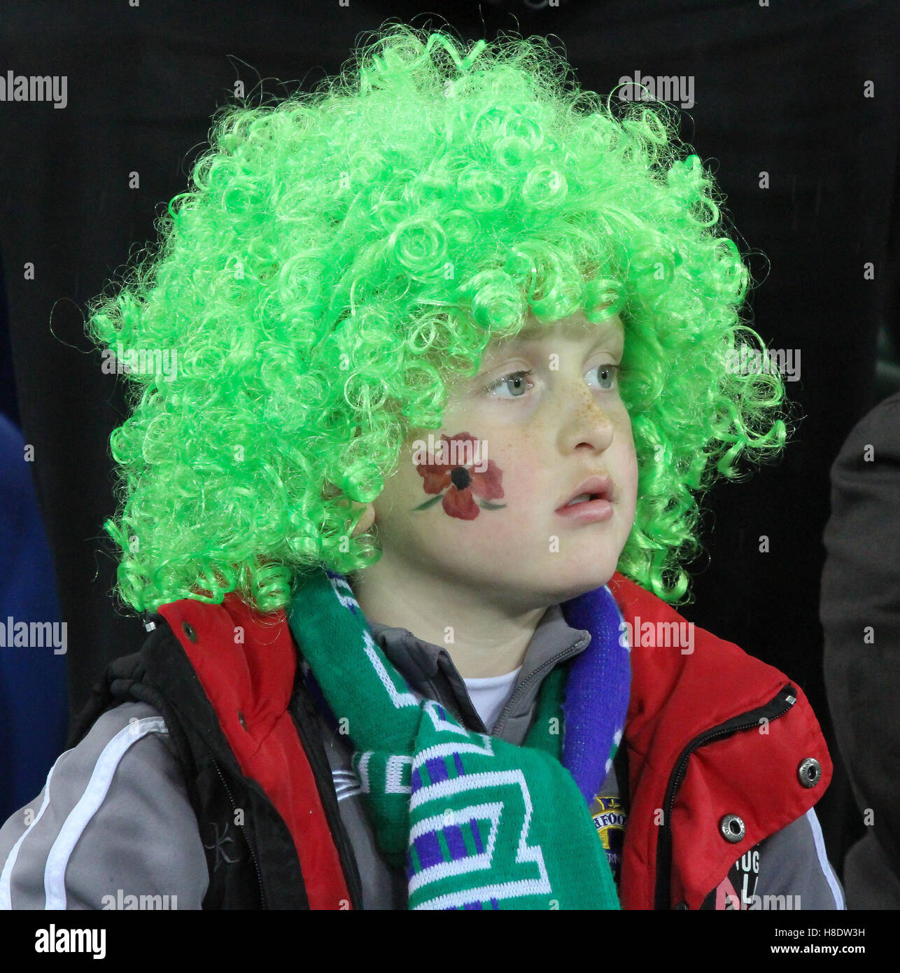 Republic Of Ireland V Azerbaijan: Northern Ireland Football Game Stock Photos & Northern