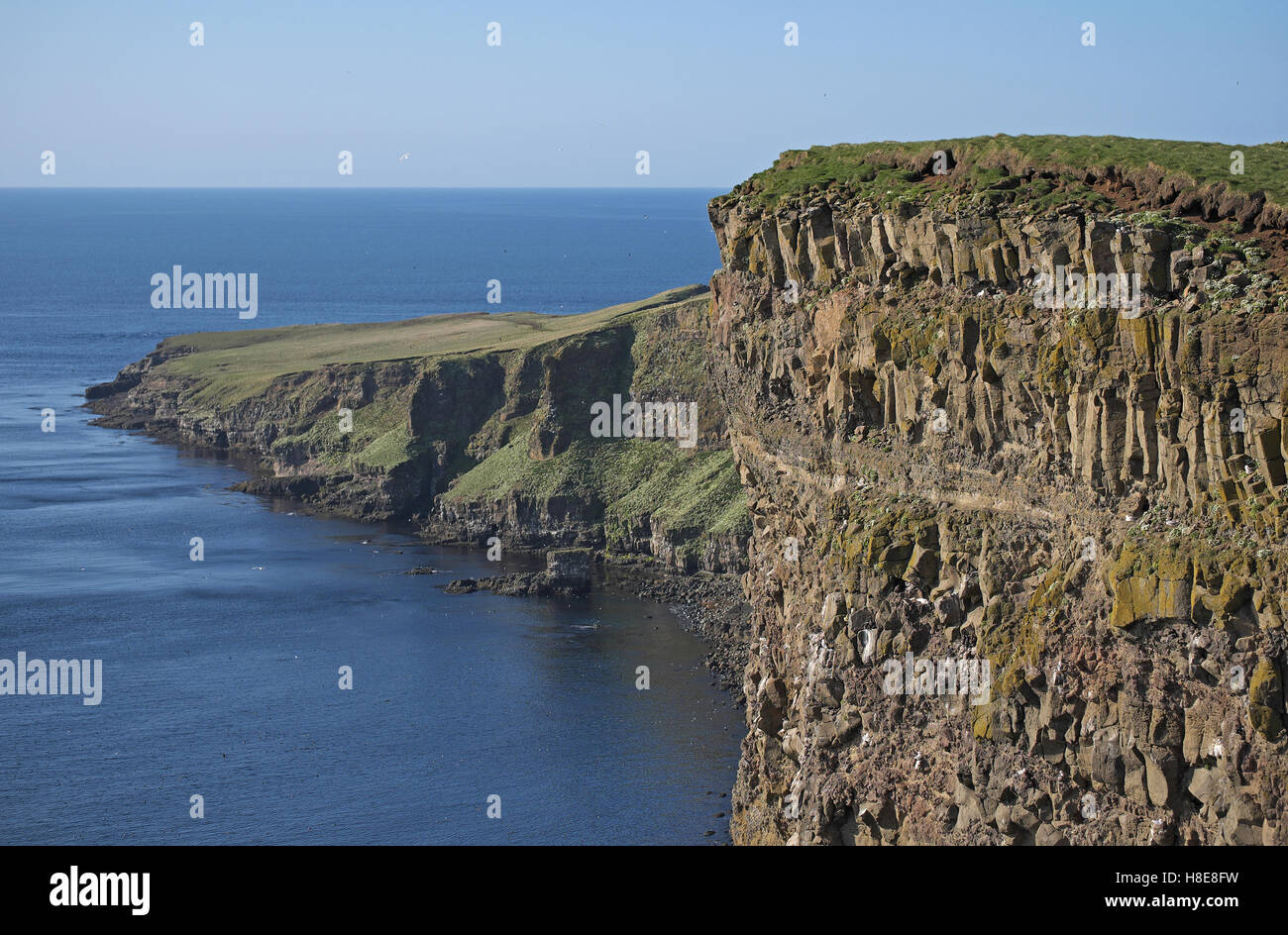 Basalt cliffs, island of Grimsey, north east Iceland. - Stock Image