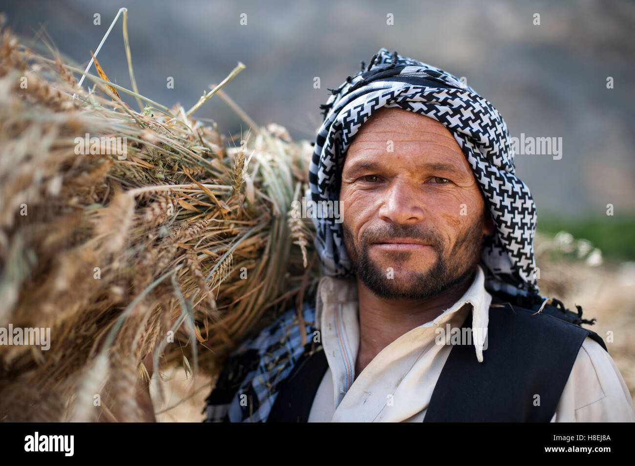 An Afghan man from the Panjshir Valley holds a freshly harvested
