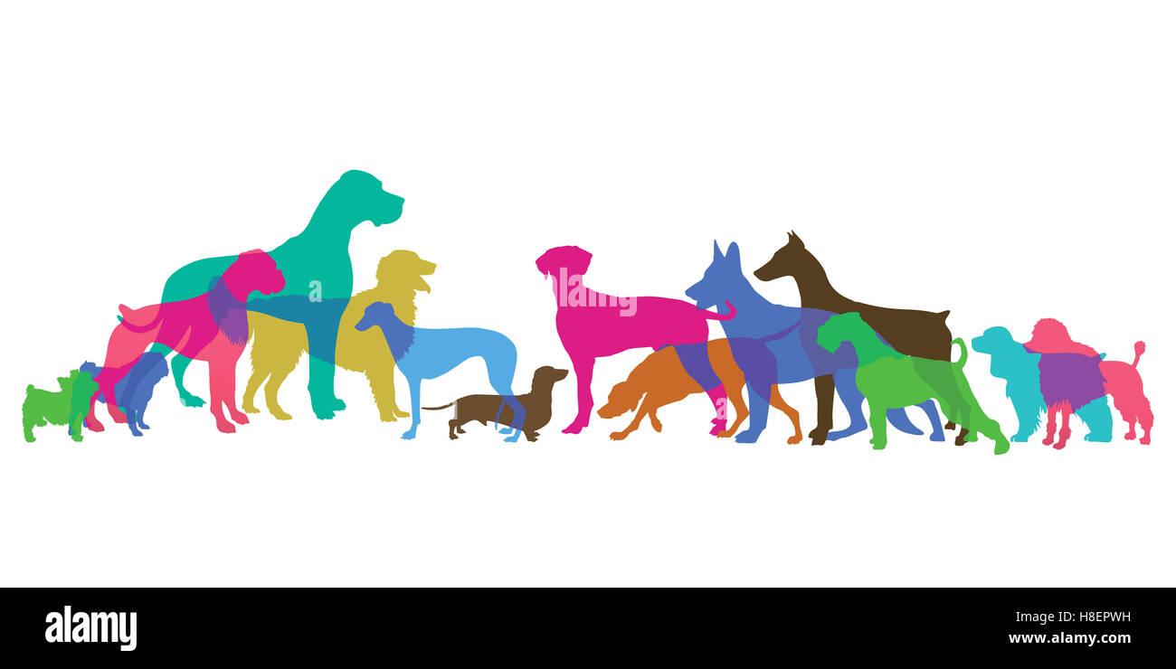 Breeds, dog, canine, - Stock Image