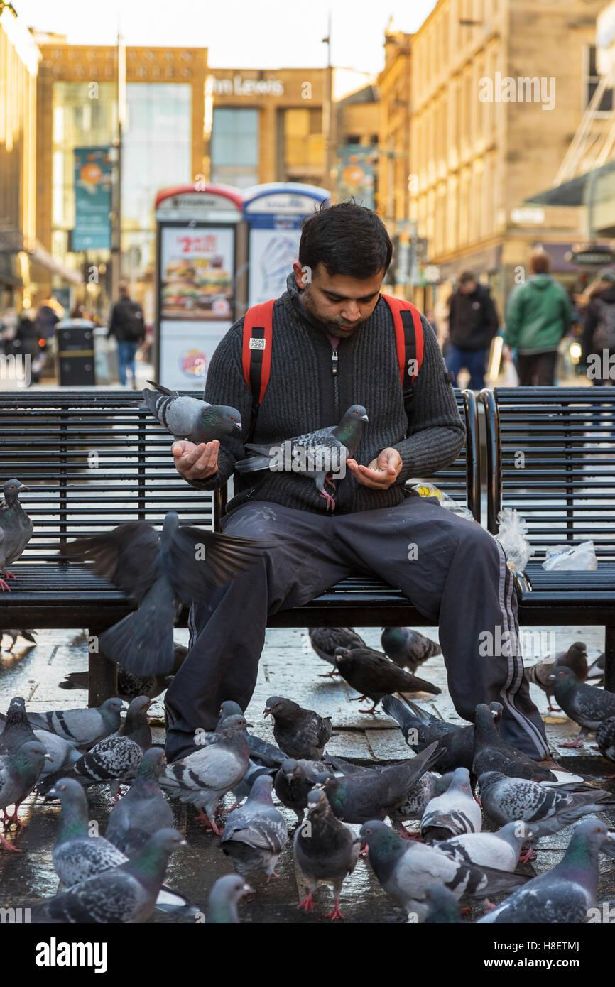 Young man feeding ferral pigeons in Sauchiehall Street, Glasgow,Sscotland - Stock Image