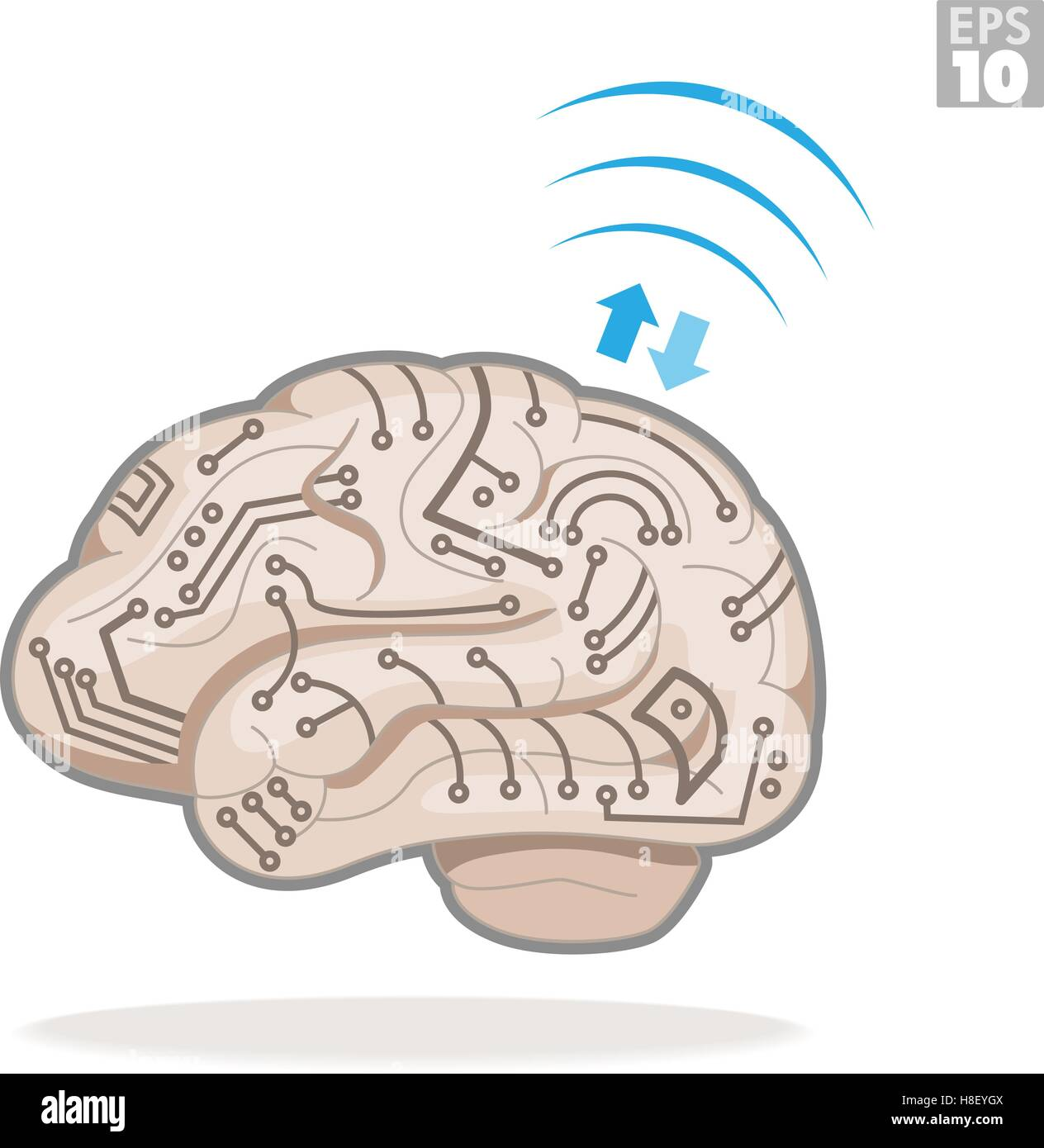 Electronic Vectors Stock Photos Images Circuitry Of An Calculator Royalty Free Photography Human Brain With Circuits Processing Information Image