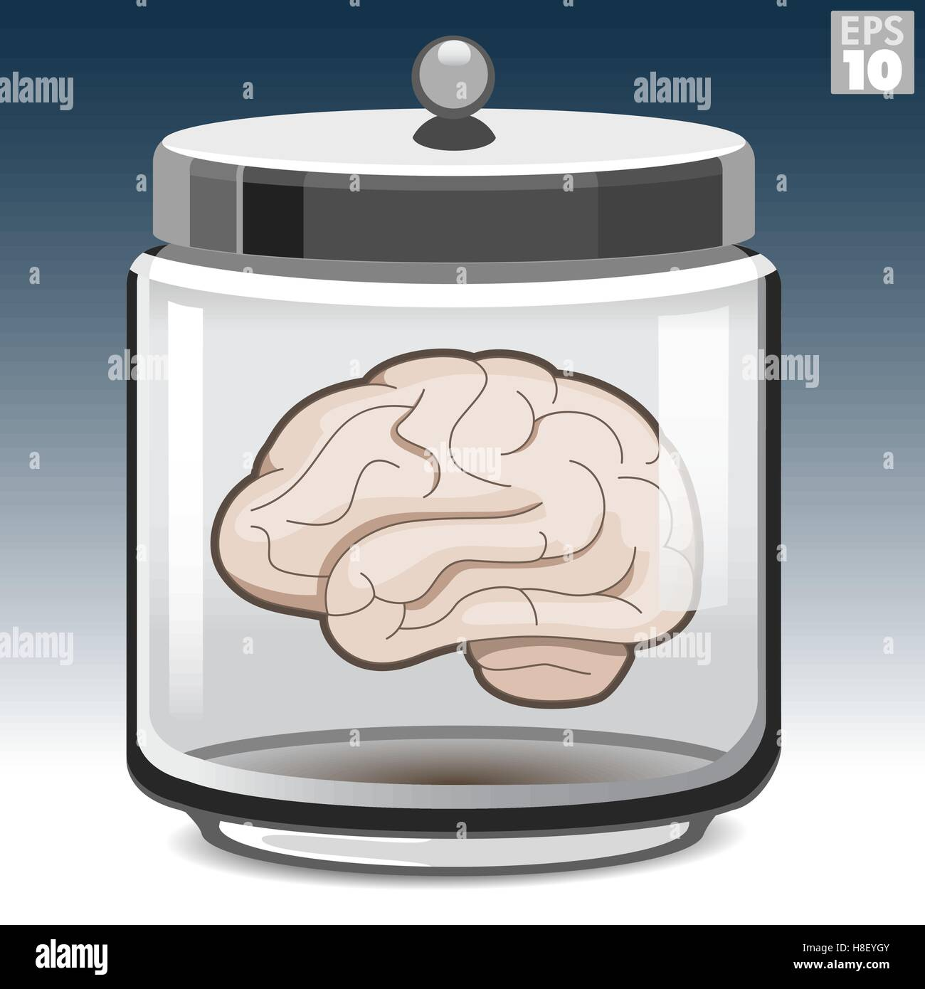 Human brain in a glass jar - Stock Vector