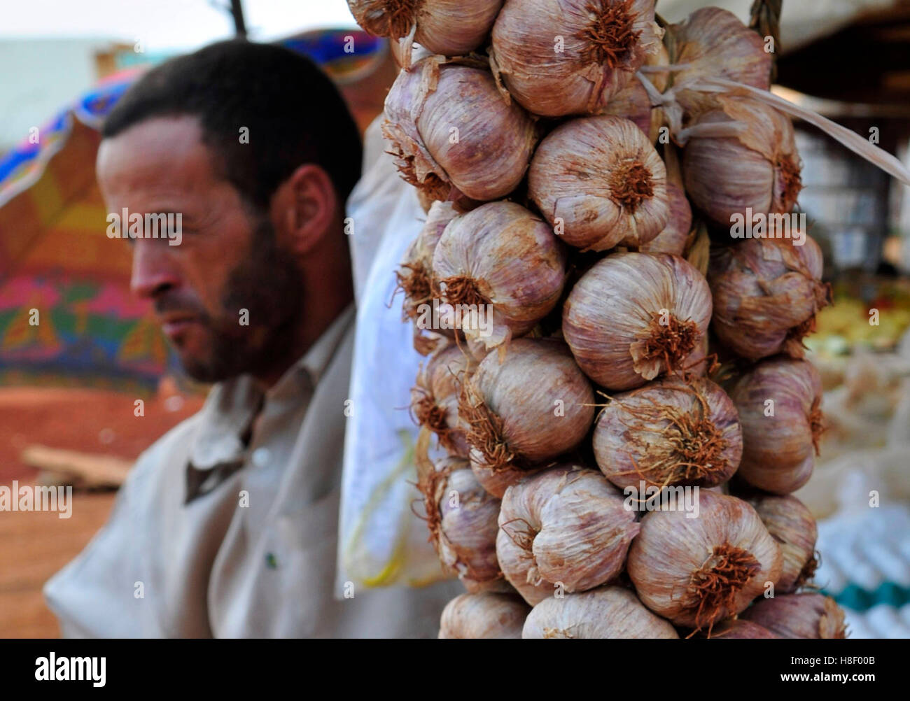 A Brazilian garlic vendor at a market in a small town in the state of Goias, Brazil. - Stock Image