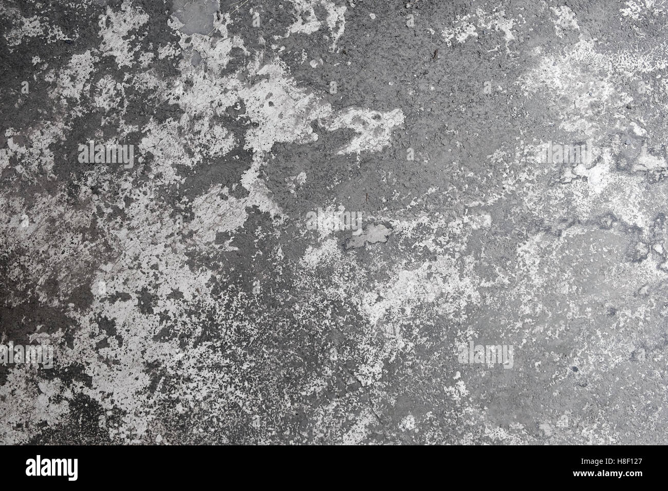 Polished old grey concrete floor, texture background - Stock Image