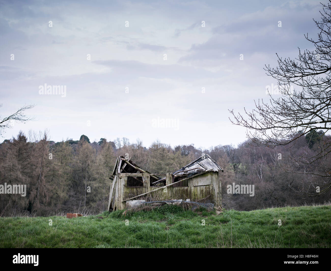 an old derelict fallen down shed in the countryside Stock Photo