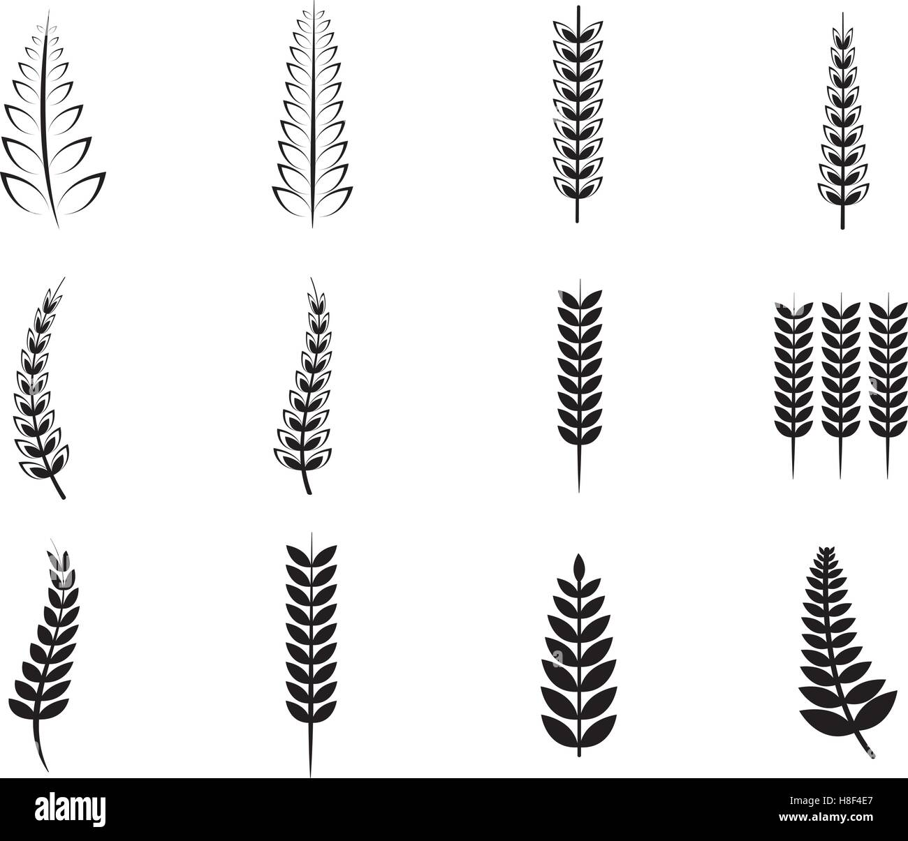 Various ferns icons - Stock Vector