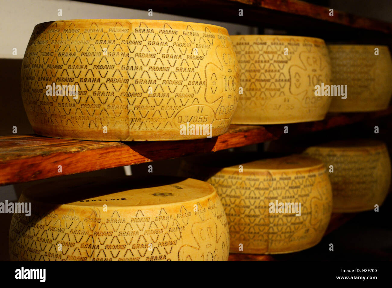 Tasty Italian cheese sold in Giolito cheese shop in Bra, Piedmont , Italy. - Stock Image