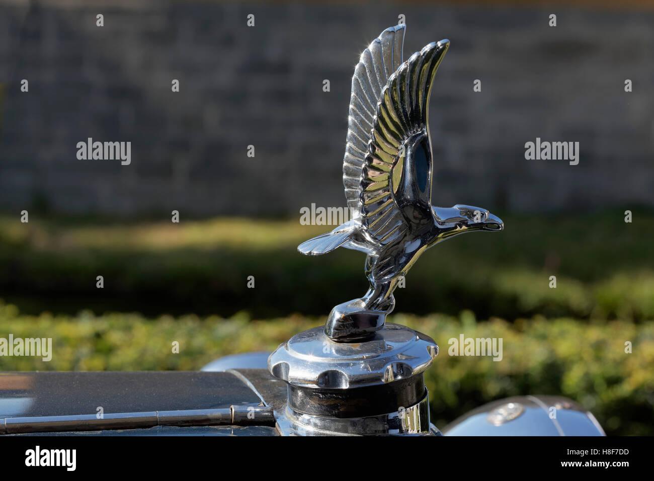 Vintage Eagle Car Mascot Automobilia Hood Ornament Special Buy