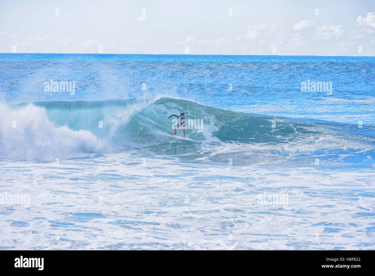 7d14b57659 Surfer