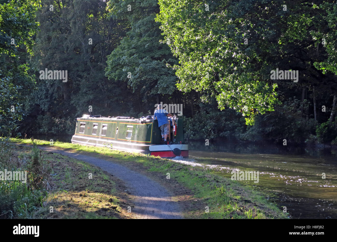 Narrowboat in distance, Bridgewater Canal Runcorn in Summer,waterside, Cheshire, England,UK - Stock Image