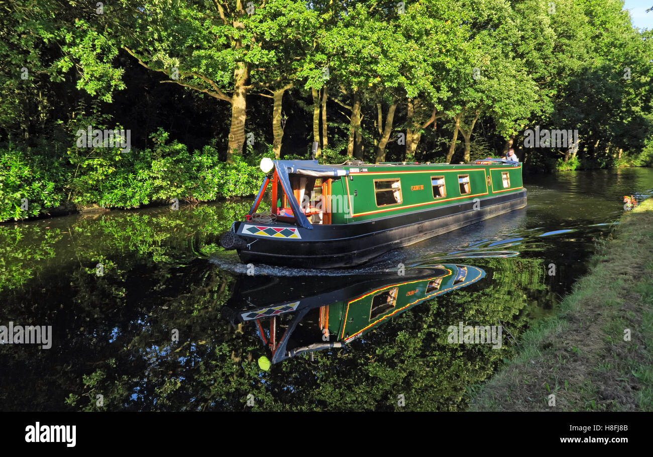 Narrow Boat on Bridgewater Canal Runcorn in Summer,waterside, Cheshire, England,UK - Stock Image