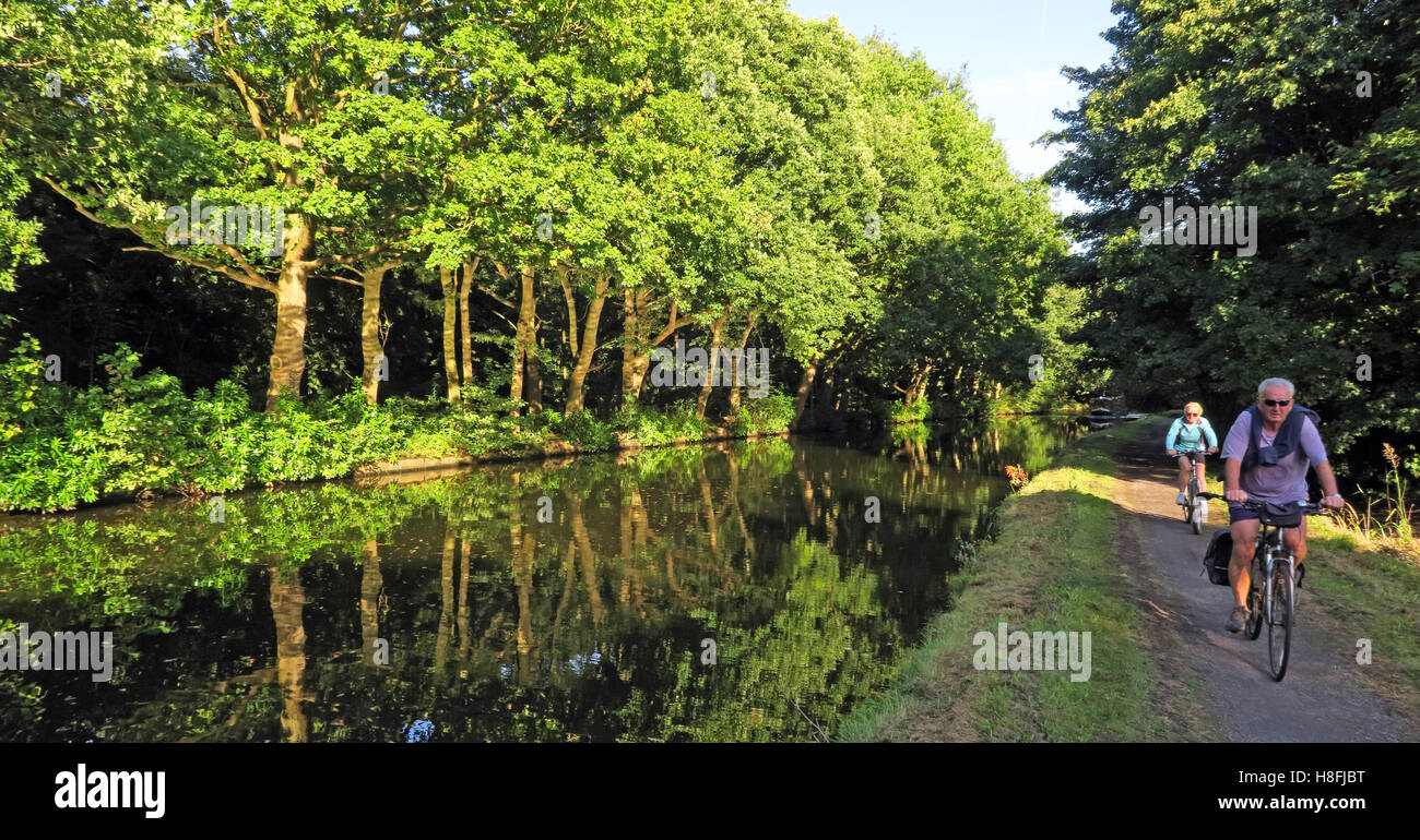 Bridgewater Canal Runcorn in Summer,waterside cyclists, Cheshire, England,UK - Stock Image