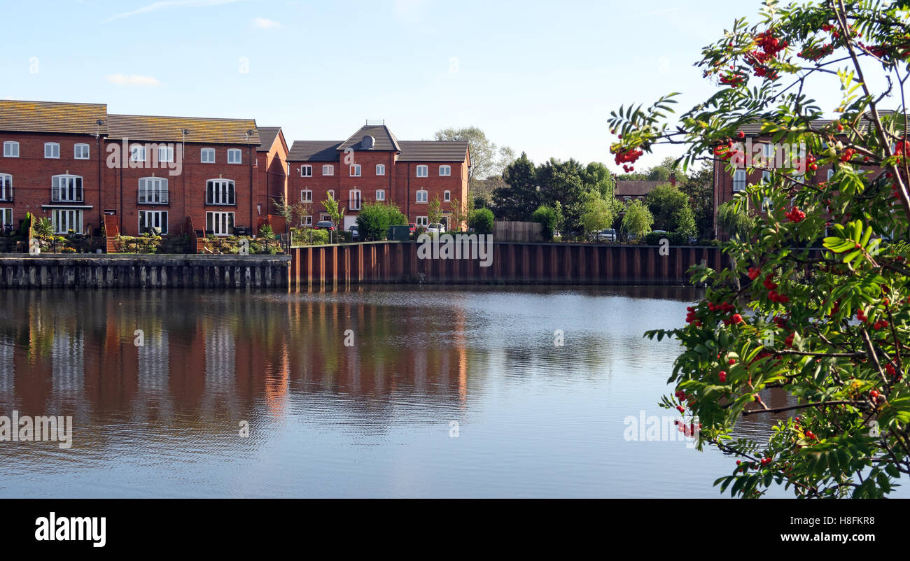Housing at Walton Lock, Warrington, Cheshire, England, UK - Stock Image