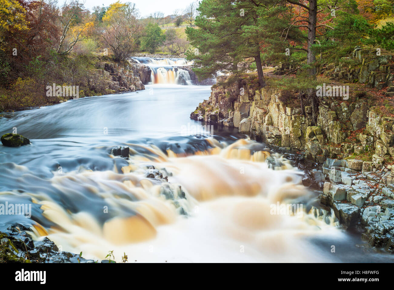 Low Force waterfall in Upper Teesdale, - Stock Image