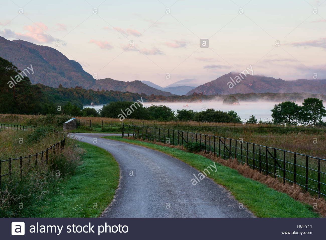 Countryside view with a lake in misty early morning hour in Killarney National Park Kerry Ireland - Stock Image