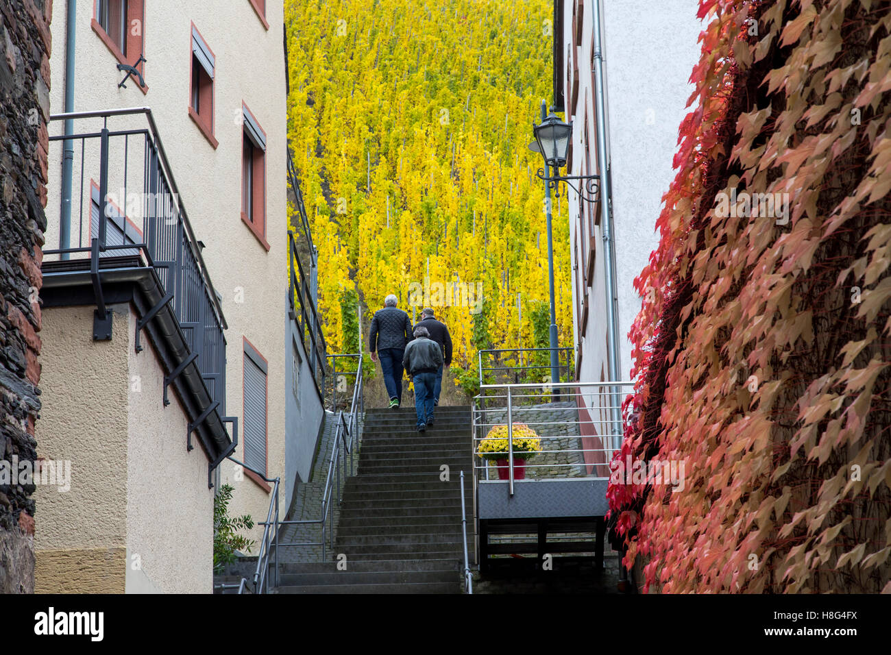 Moselle valley, city of Bernkastel-Kues, Germany, stairway out of the old town into the vineyards, Stock Photo