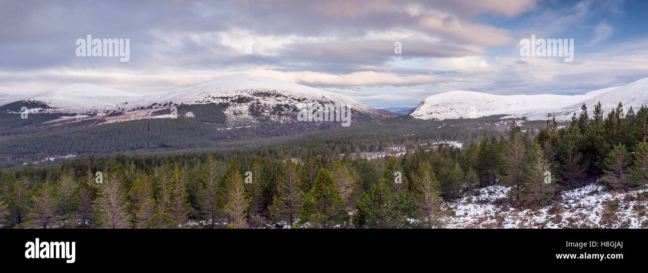 Glen More and Glenmore Forest Park in the Cairngorms, Scotland. - Stock Image