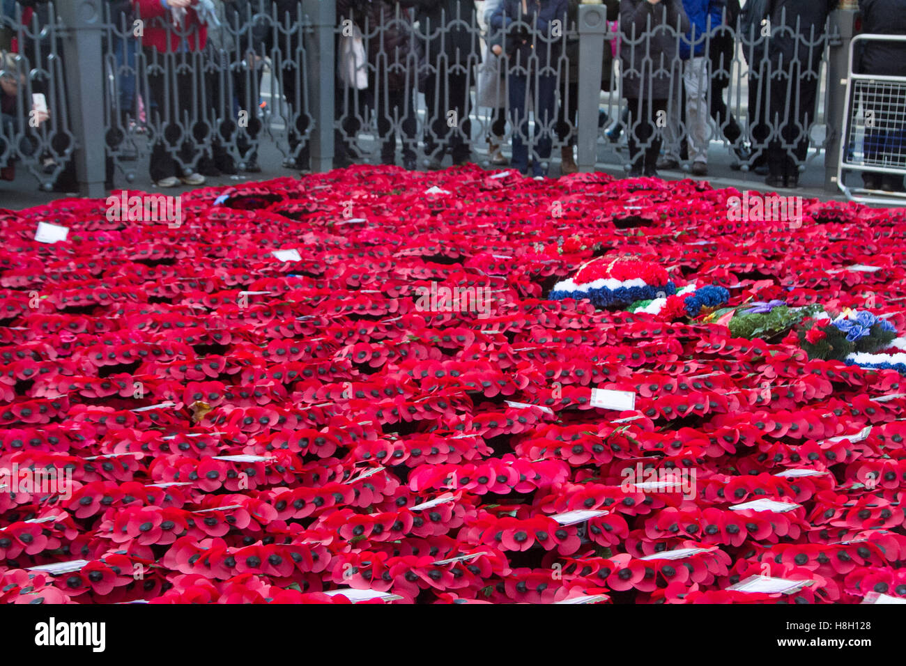 London UK.13th November 2016. Large crowds view the memorial wreaths placed around The Cenotaph during Remembrance Sunday by members of the Royal Family, Politicians and armed services Credit:  amer ghazzal/Alamy Live News Stock Photo