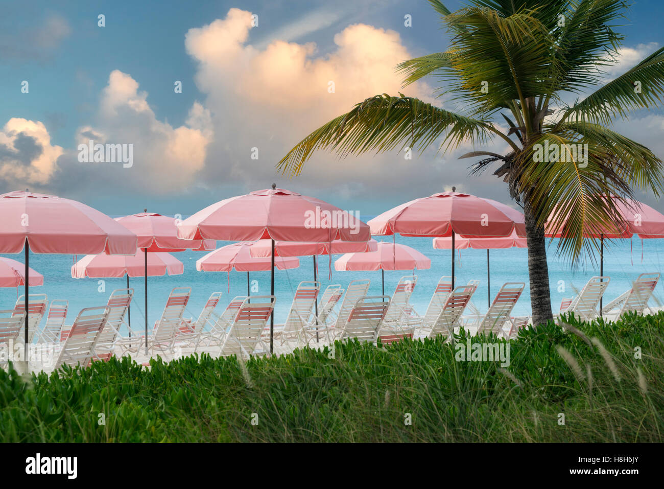 Pink beach umbrellas and chairs. Turks and Caicos. Providenciales. - Stock Image