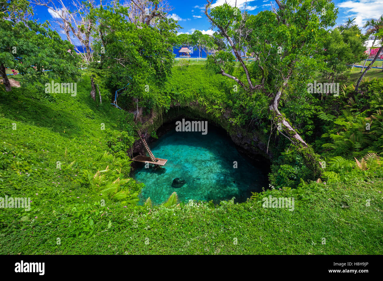 To Sua ocean trench - famous swimming hole, Upolu, Samoa, South Pacific - Stock Image