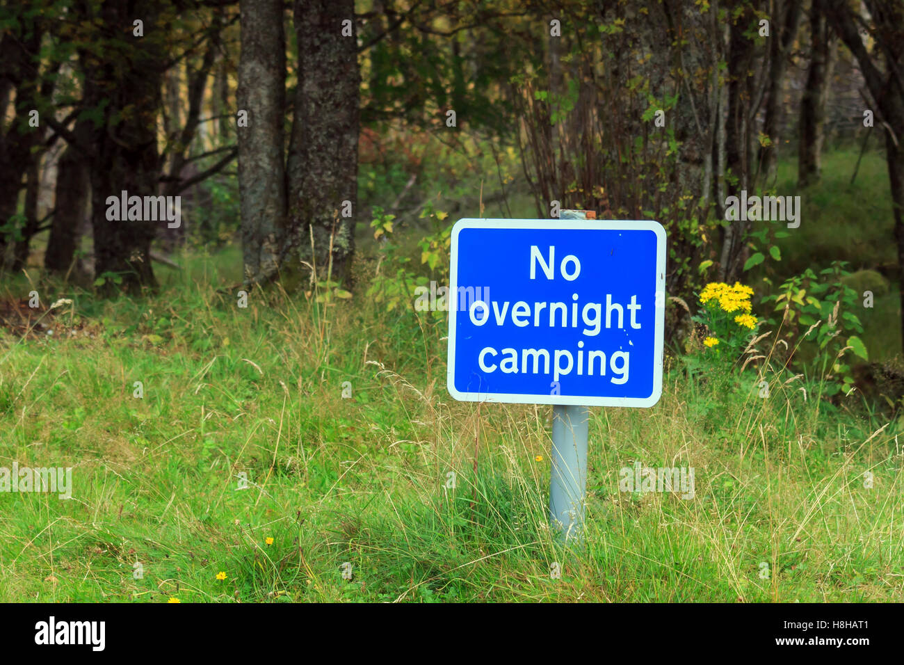 Blue No Overnight Camping sign on a short post by the side of the road Stock Photo