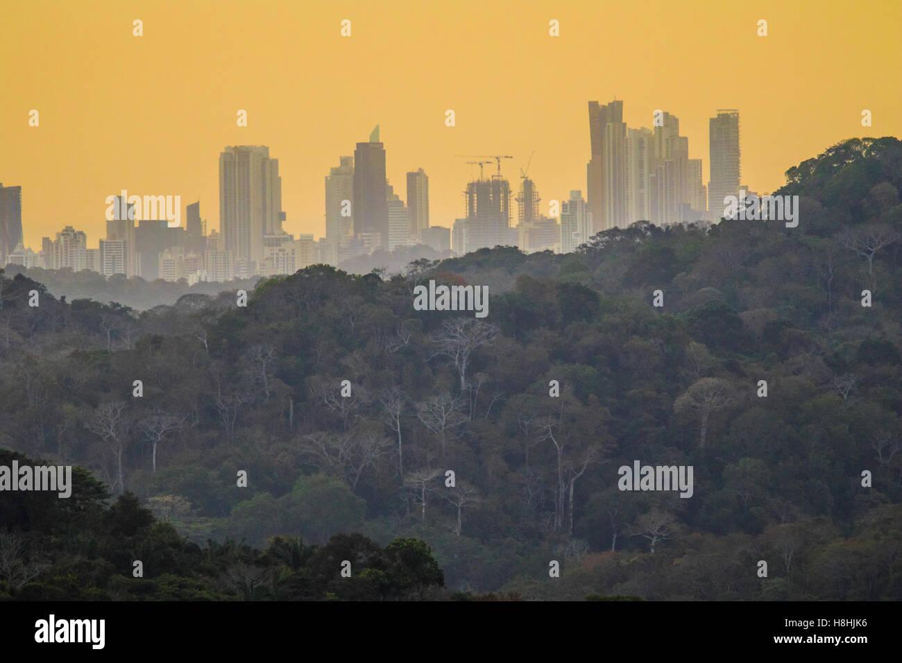 RAINFOREST AND PANAMA CITY at sunrise, Soberiana National Park, Panama. - Stock Image